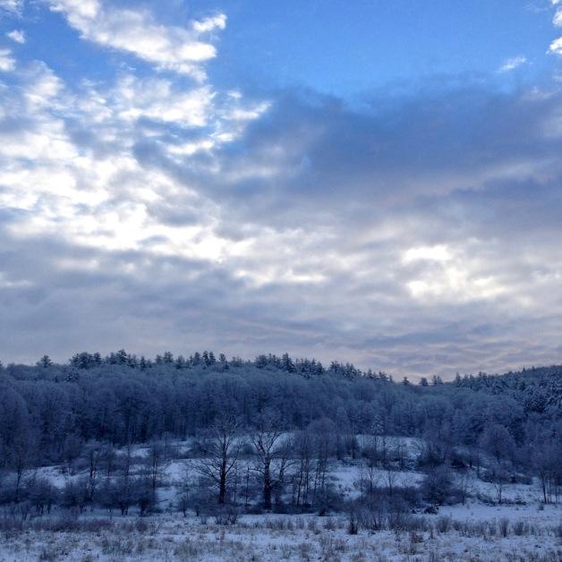 january-dawn-gill-ma